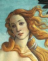 botticelli-primavera-viso